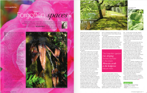 Forgotten Spaces Article in Essence Magazine, Surrey's premier lifestyle magazine